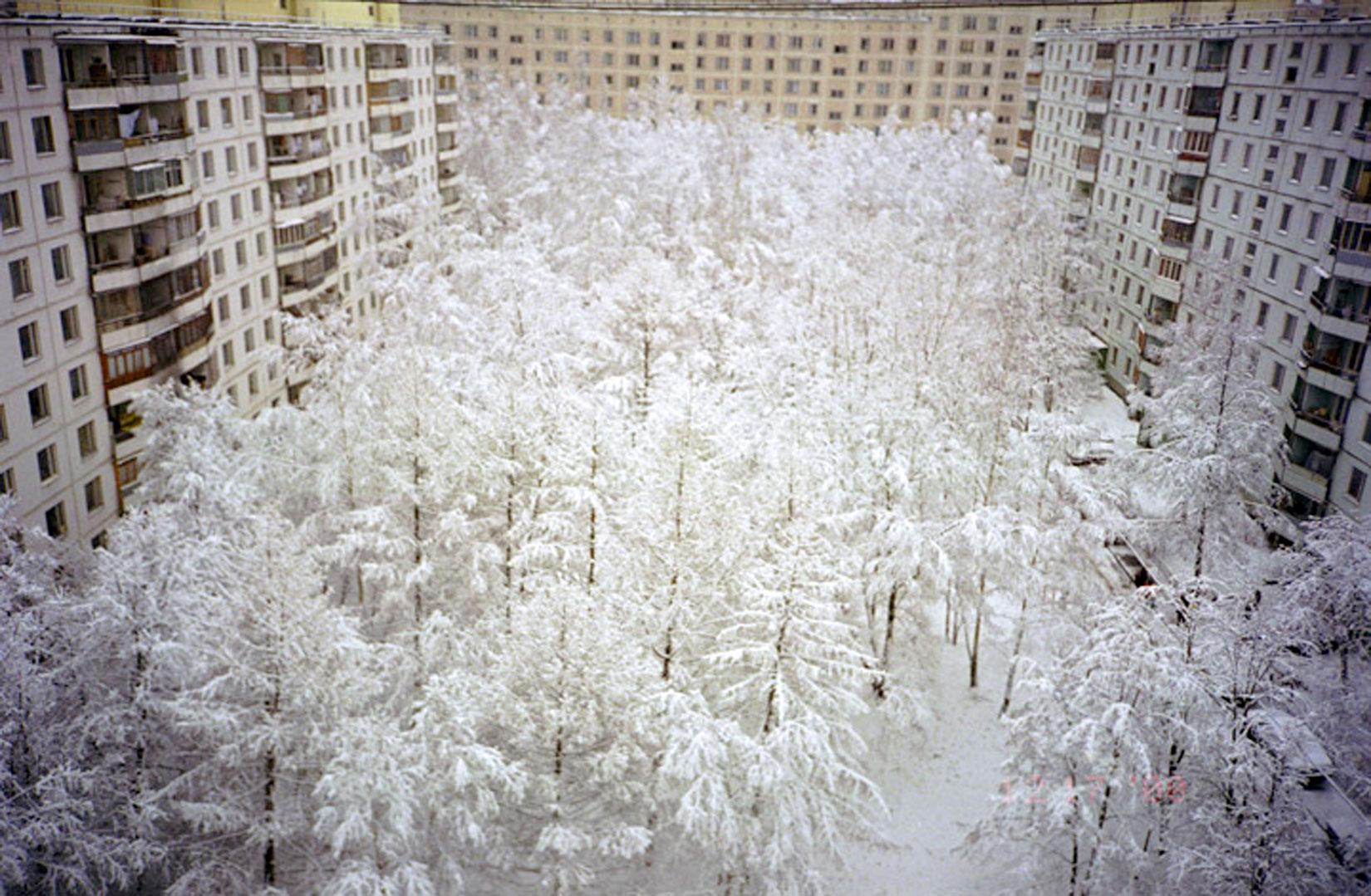Slava_Mogutin_5